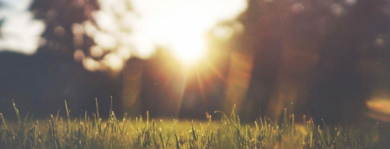 solskin over dagpenge for udlandsdanskere