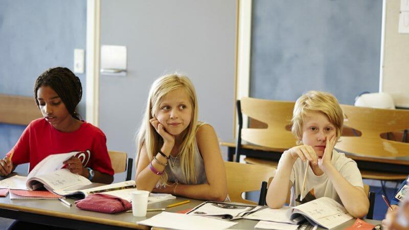danish language courses, danish language courses, danes worldwide