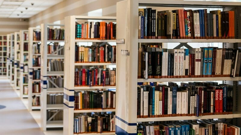 medlemsbibliotek, juridisk rådgivning, danes worldwide