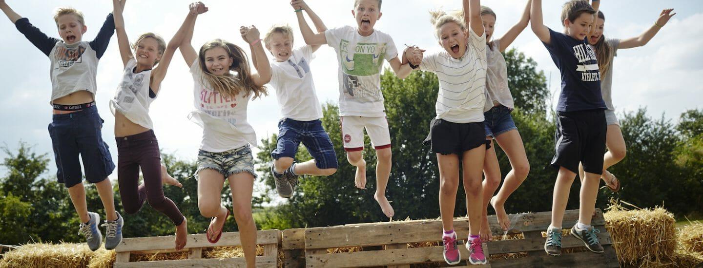 Summer School danes worldwide
